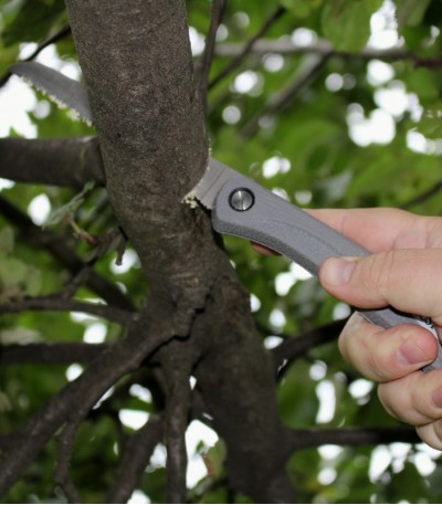 řezání větve o průměru 5 cm